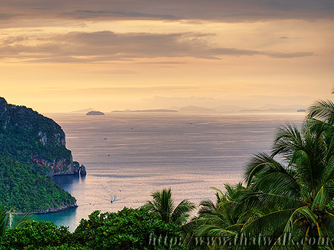 Phi Phi Viewpoint Part.8