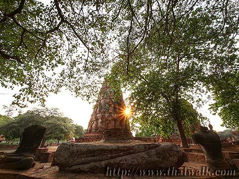 Wat Phra Mahathat in Ayutthaya No.12