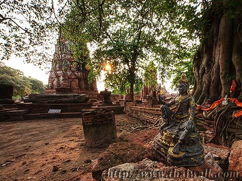 Wat Phra Mahathat in Ayutthaya No.13