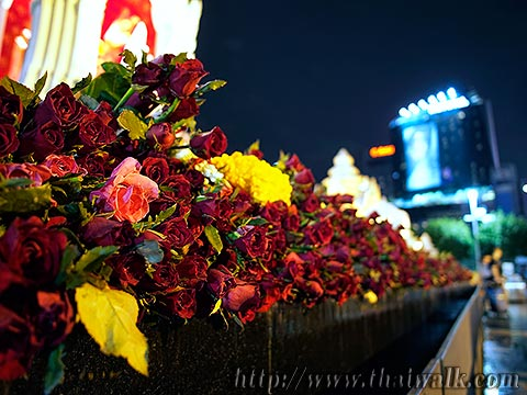 Trimurti Shrine No.05 - the red flowers
